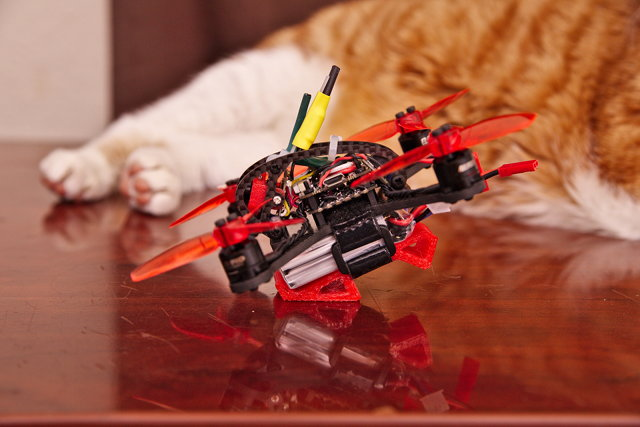 Leader 120 Micro FPV Quad and My Cat, Rascal